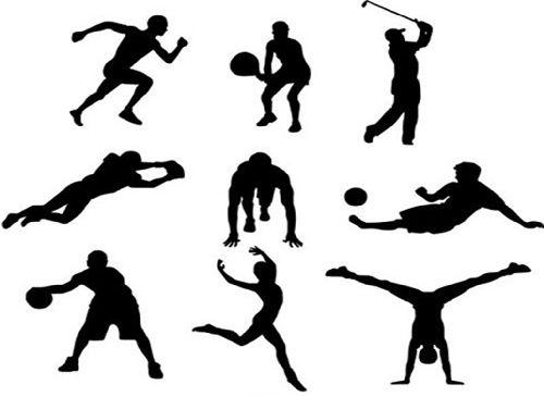 список летние виды спорта и их описание
