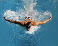 Луганские пловцы завоевали 12 медалей на Чемпионате Украины